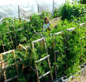 me-in-garden-with-tomatoes811