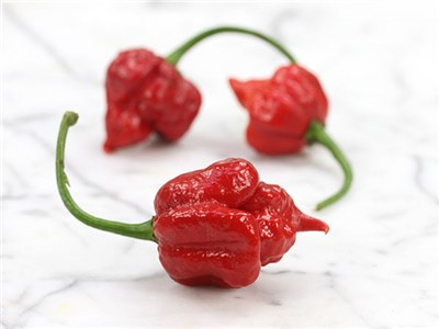 Trinidad-Scorpion-Hot-Pepper