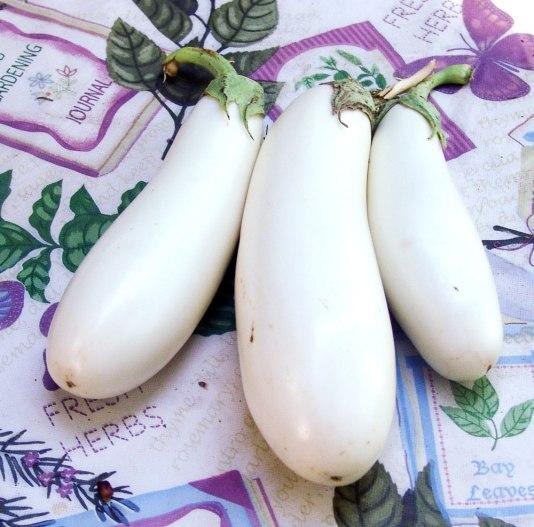 white-eggplant-2