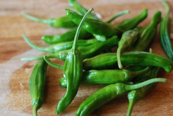 shishito-hot-pepper