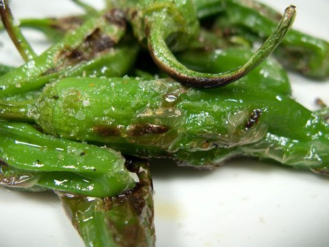 Shishito-Peppers-Pictures