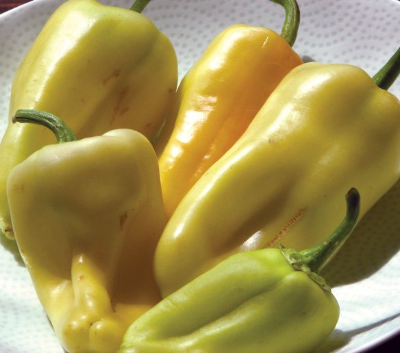 gypsy-peppers.jpg