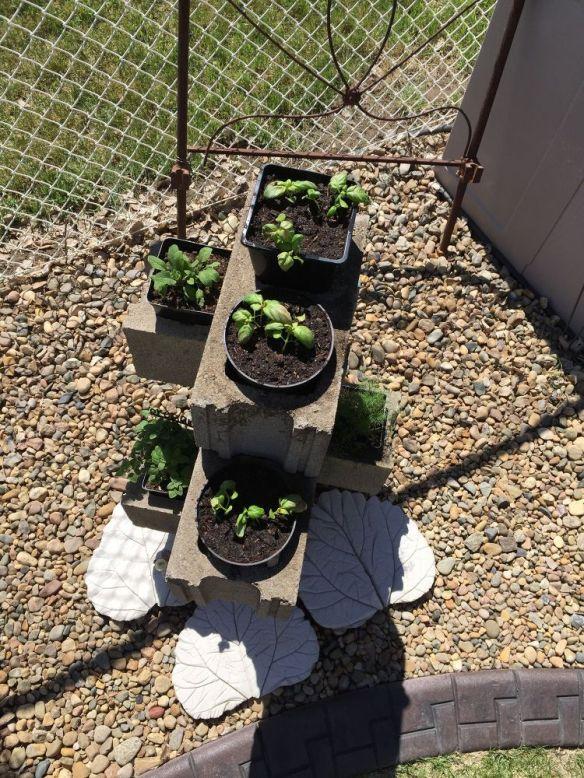cinder-block-herb-garden-container-gardening-gardening-repurposing-upcycling