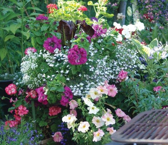 floral-display